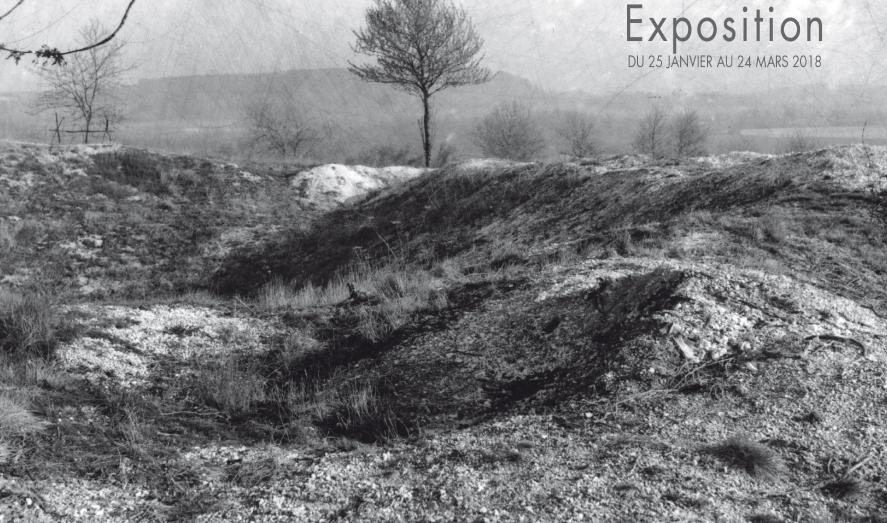 Exposition: Cicatrices, sur les champs de bataille de la Grande Guerre